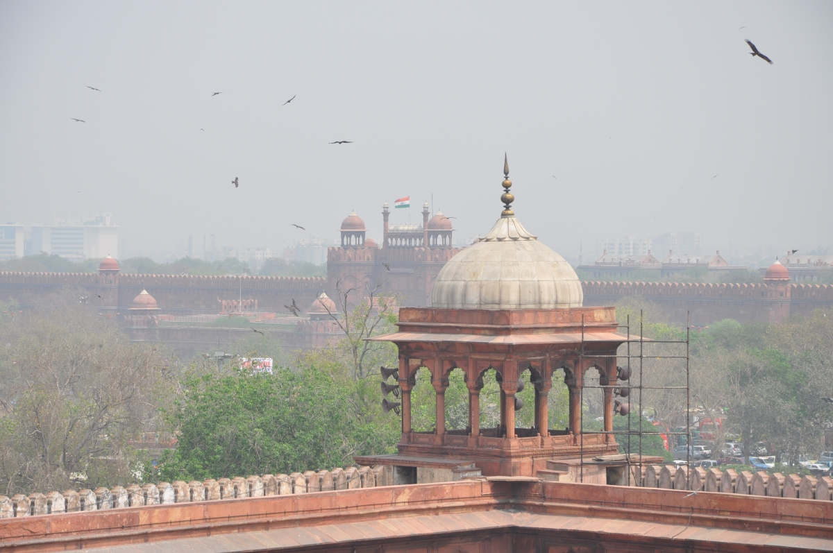 Delhi India - A Journey Through Time